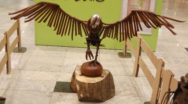 фото орла
