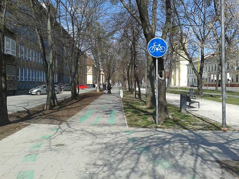Велосипедные дорожки пересекают город вдоль и поперек
