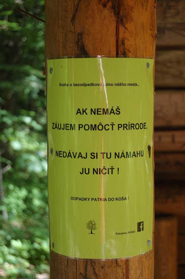 лес в Кошице